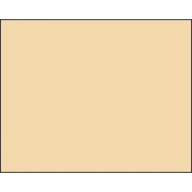 Фон бумажный BD 2,72 х 11,0 м Светло-коричневый (Ponge) (121BDCW)
