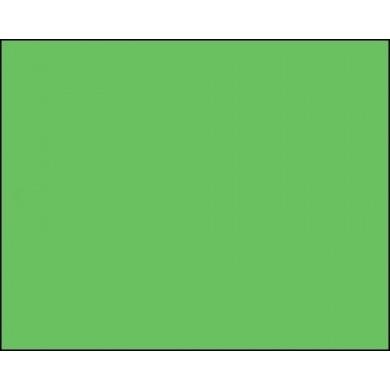 Фон бумажный BD 2,72 х 11,0 м Салатовый (132BDCW)