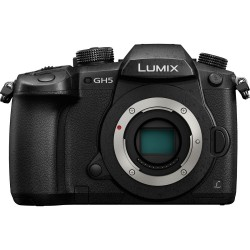 Panasonic Lumix DC-GH5 (Body)