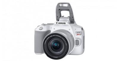 Canon анонсировала EOS 250D, ультра компактную зеркальную камеру с возможностью записи 4К