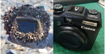 Невероятное путешествие одной камеры